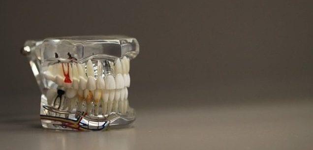 dentistry-668191_640